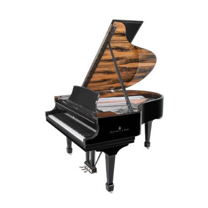 http://www.steinway.com/pianos/steinway/special-collection/onyx-duet